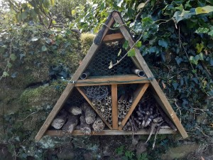 Bug box St Marys Embsay